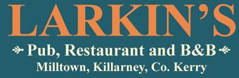 Larkins Pub and B&B Accommodation Logo