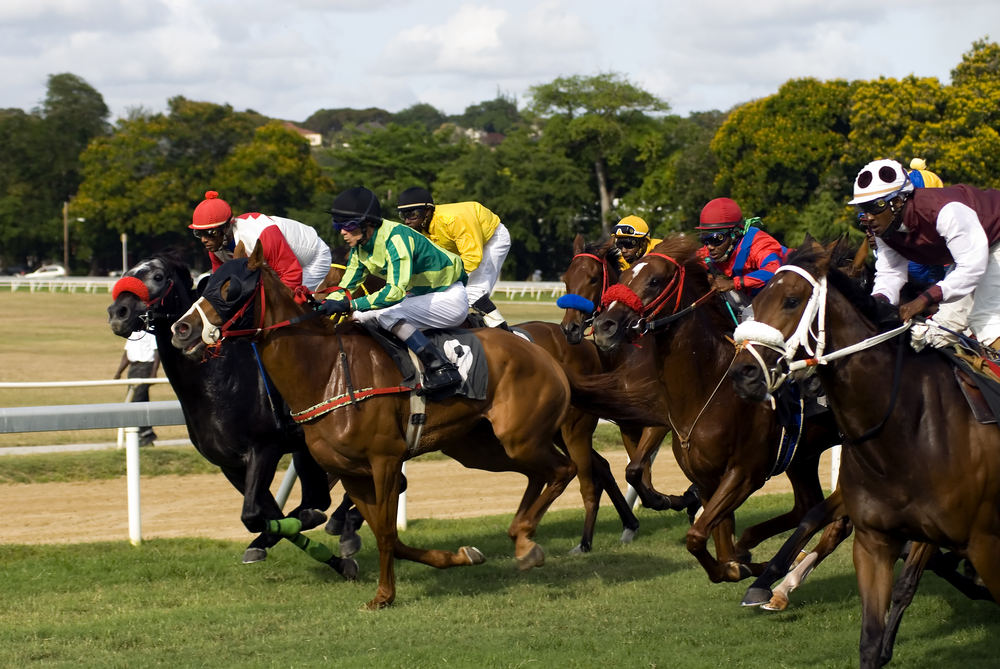 Horse Racing in Kerry